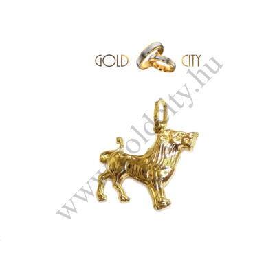horoszkóp,medál,oroszlán,